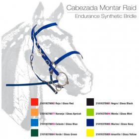 CABEZADA MONTAR RAID