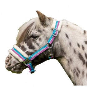 Cabezada -Funny Horses-
