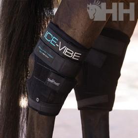 PROTECTOR HORSEWARE...